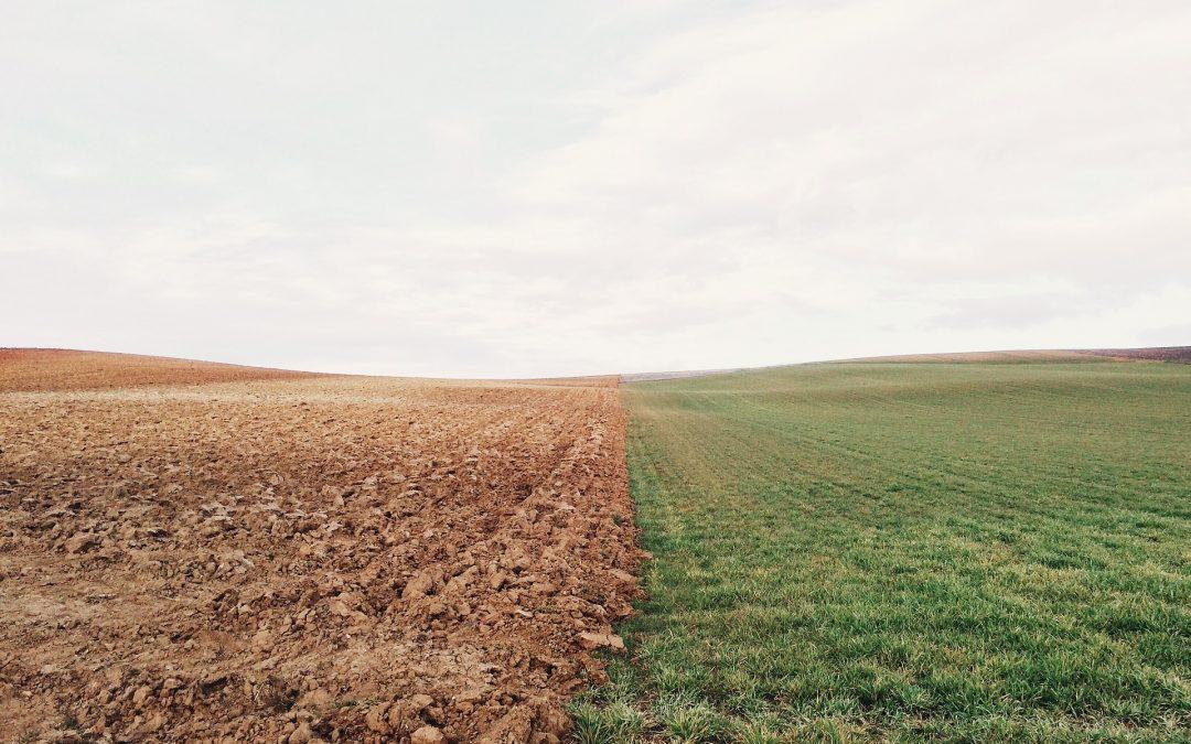 Compétences durables et alimentation, en route vers la transition